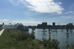 Rotterdam-Floating-Farm-495x400