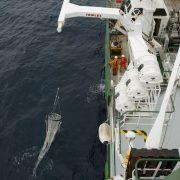 Plankton tow
